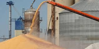 La UE y Brasil piden a la OMC límites a los subsidios agrícolas