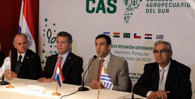 Argentina asumió la presidencia temporal del Consejo Agropecuario del Sur