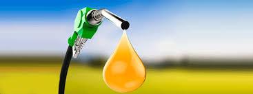 EU ratificó los aranceles de hasta 72,28% para el biodiesel argentino