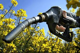 Estados Unidos ratificó el bloqueo al biodiésel argentino