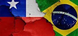 Chile y Brasil prevén firmar acuerdo para orgánicos este año