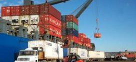 Argentina Exporta: un lanzamiento para cicatrizar heridas externas e internas.