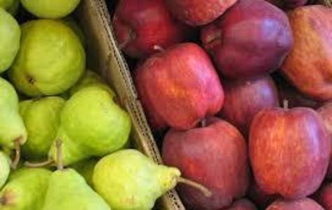 Argentina y Estados Unidos coordinan temporada de exportación de frutas frescas.