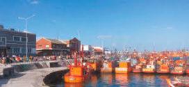Será obligatorio utilizar el sistema de turnos online para ordenar la descarga en los puertos