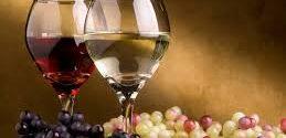 Se espera que las exportaciones de vino crezcan U$S 150.000